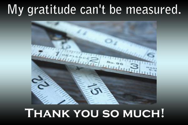 Gratitude Cannot Be Measured Mormon Ecard