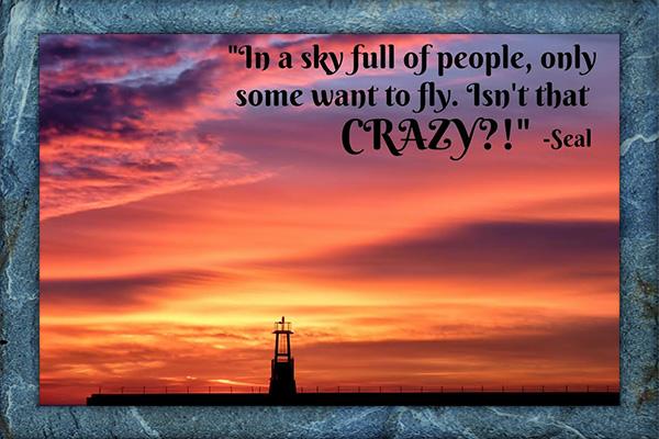 Sky Full of People Seal Mormon E-Card