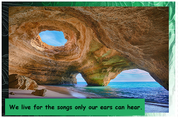We Live for the Songs Encouragement Mormon E-Card